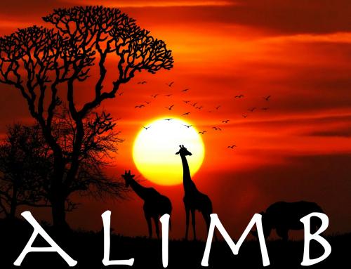 African Kalimba Meditation Music