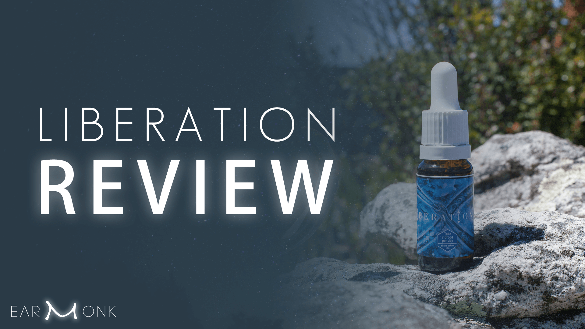 Liberation the Remedy Review