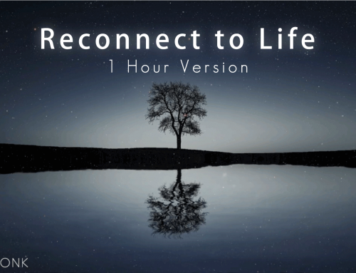 Life Moves Slowly || How to Reconnect to Life 1 Hour Version