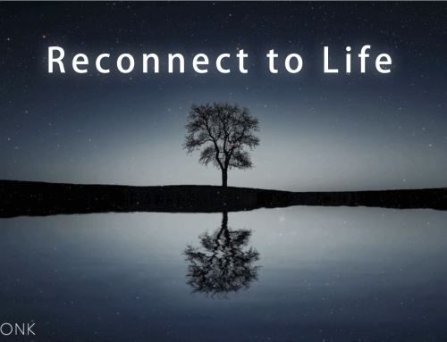 How to Reconnect to Life